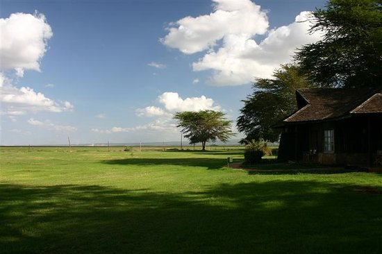 Ol Tukai Lodge : View from Elephant Wing