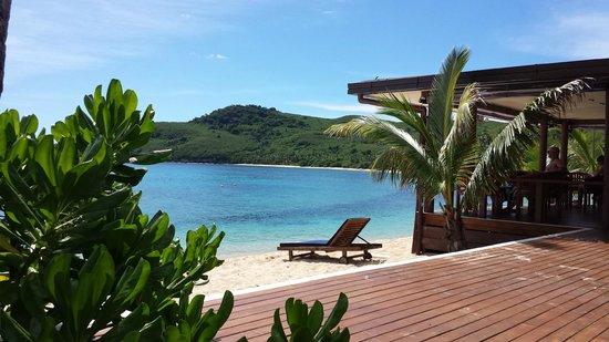 Octopus Resort: beach and Reef from the Beachside bar deck