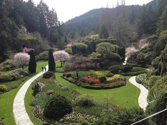 The Butchart Gardens : Butchart Gardens