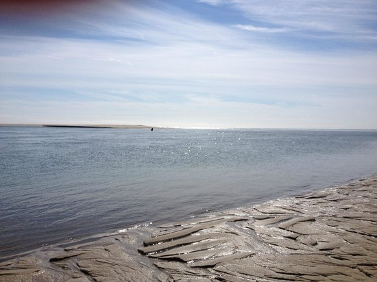 Chatham Lighthouse Beach : Beautiful crisp April day