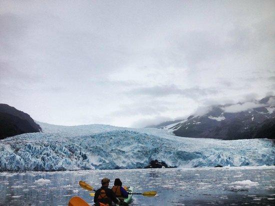 Kayak Adventures Worldwide: Aialik Glacier from my kayak