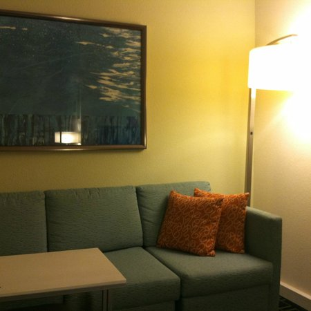 SpringHill Suites Austin North/Parmer Lane: Living area