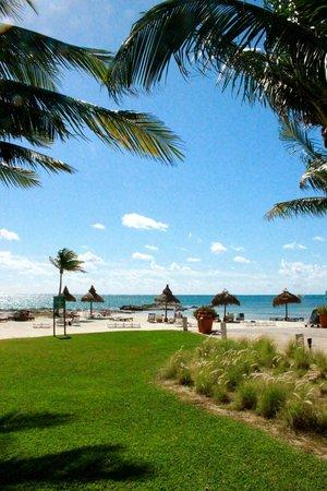 Club Med Cancun Yucatan : hotel
