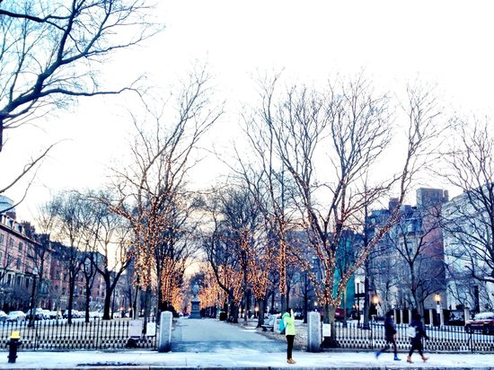 The College Club of Boston : Commonwealth Avenue - where the College Club is located