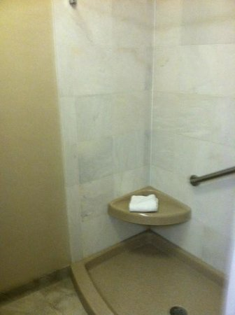 Drury Inn & Suites Kansas City Independence: Shower