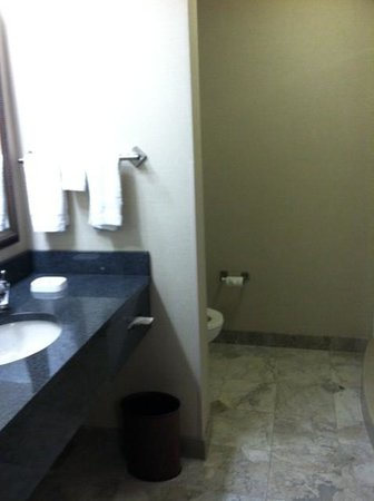 Drury Inn & Suites Kansas City Independence: Bathroom