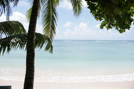 Vacations Beach Fales: View from the fale