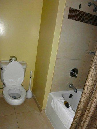Kaua'i Marriott Resort : Small bathroom