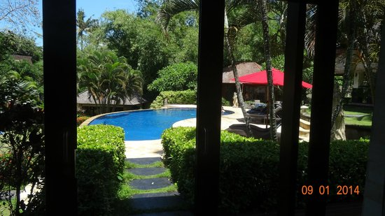 Villa Menari Bali : Pool taken from master bedroom!