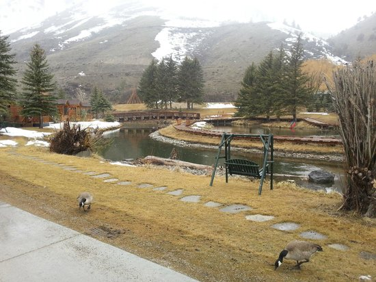 Rustic Inn Creekside Resort and Spa at Jackson Hole: View of the river on the grounds