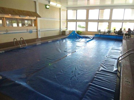 Hyannis Travel Inn: Indoor pool