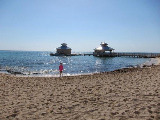 Morritts Tortuga Club and Resort : Beach!