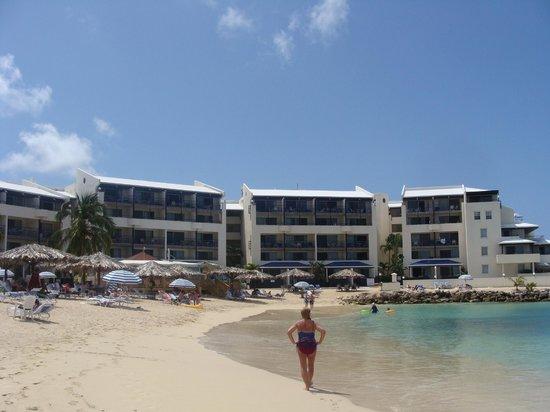 Flamingo Beach Resort : the resort