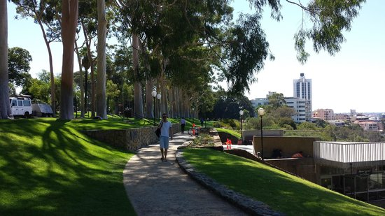 Kings Park and Botanic Garden : Kings Park