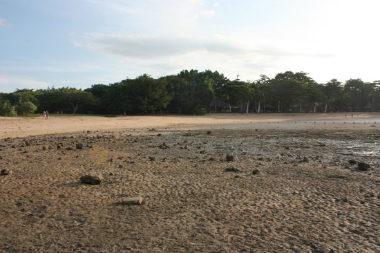 Melia Bali: beach