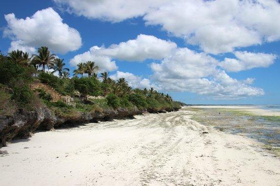 Melia Zanzibar: Beach during the low tide