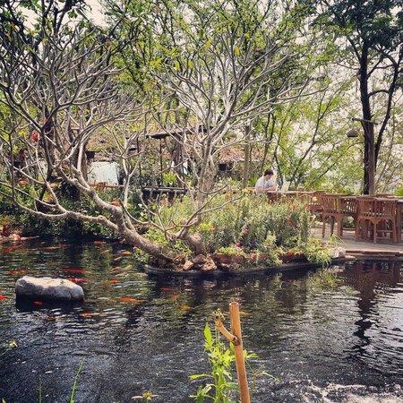 Phu Chaisai Mountain Resort : Отличная атмосфера для отдыха и работы