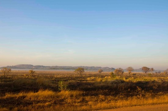 Guluyambi Cultural Cruise: Arnhemland early morning view