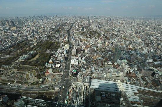 Osaka Marriott Miyako Hotel: View