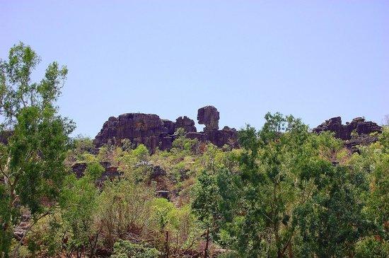 Guluyambi Cultural Cruise: head in the distance
