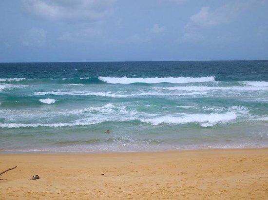 Ramada Phuket Southsea: beach front! all empty