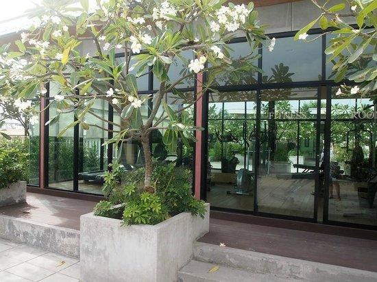 Ramada Phuket Southsea : Roof top