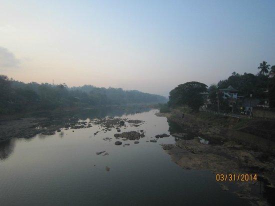 River Grove: River Walk