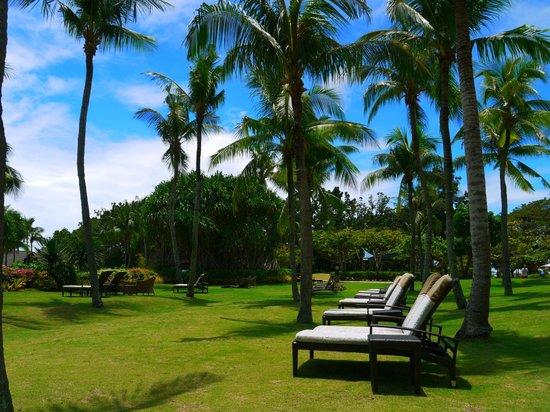 Shangri-La's Mactan Resort & Spa : Vast green expanse..