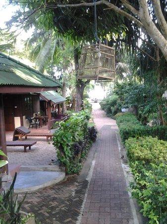 World Resort Bungalow : walkway to beach, very nice gardens