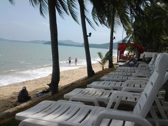 Samui Palm Beach Resort & Hotel: quiet beach, get lots of hawkers walking up and down beach selling their wares , sundeds need cl