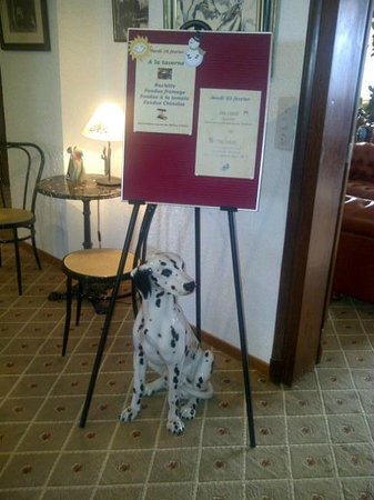 Hotel Alpina & Savoy : dalmatian greets you in restaurant