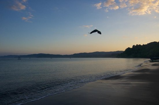 Drake Bay Backpackers: Sunrise