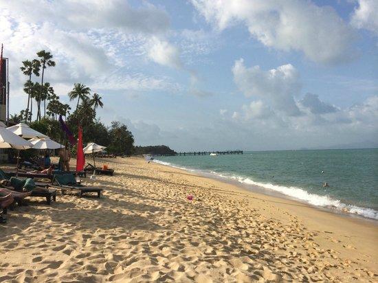 Samui Buri Beach Resort: Playa hotel