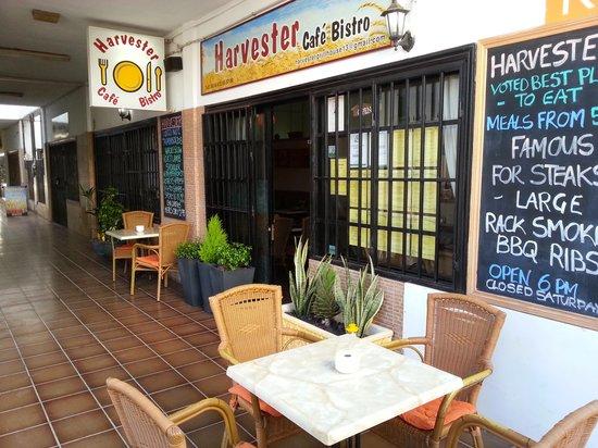 Harvester Cafe Bistro : outside seating