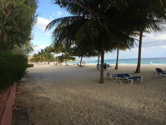 pureocean Restaurant: Nice Beach with Bar Service