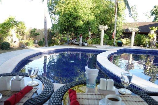 Sophia's Garden Resort : Ok pool