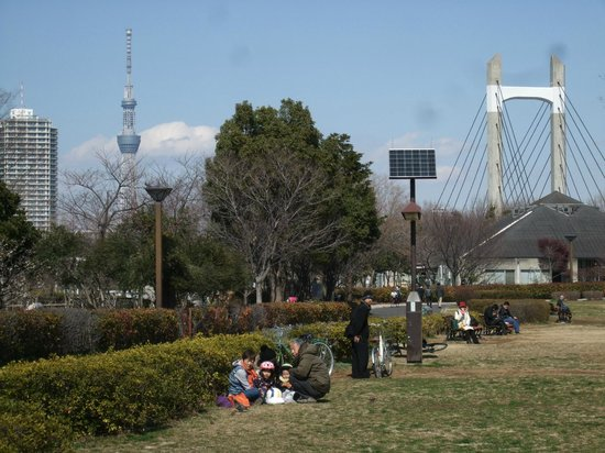 Kiba Park: スカイツリーも見えます