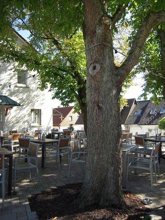 Aichtal, Deutschland: Biergarten-Blick