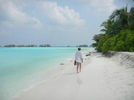 Paradise Island Resort & Spa : Spiaggia