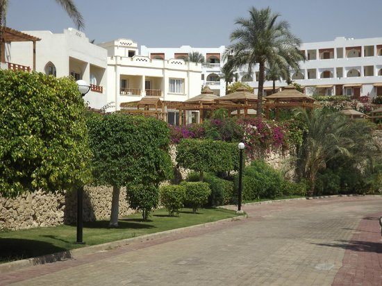 Royal Grand Sharm Hotel: Hotel from the beach