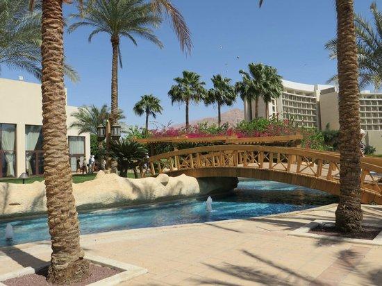 InterContinental Aqaba Resort : ground view