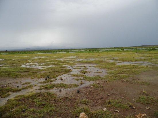 AA Lodge Amboseli: unterwegs im Amboseli
