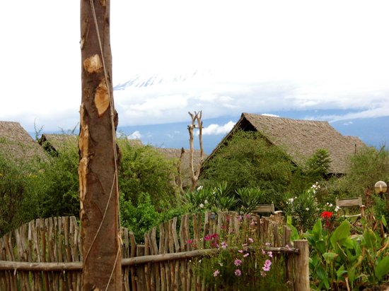 AA Lodge Amboseli : Blick auf die Zelte