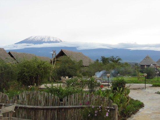 AA Lodge Amboseli: Blick von der Bar aus
