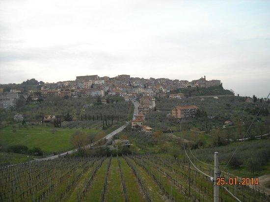 Agriturismo La Pietriccia : Panorama dalla camera