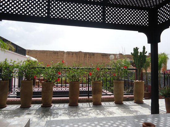 利雅得阿濟格利酒店照片