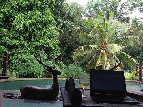 Villa Arya Ubud: Family Villa garden