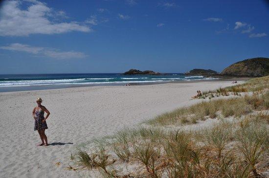 Ocean Beach South