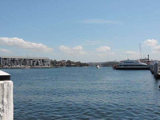 Novotel Sydney on Darling Harbour: Hotel front again