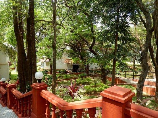 The Gateway Hotel Pasumalai Madurai : Un bloc de chambre Perdu dans la végétation